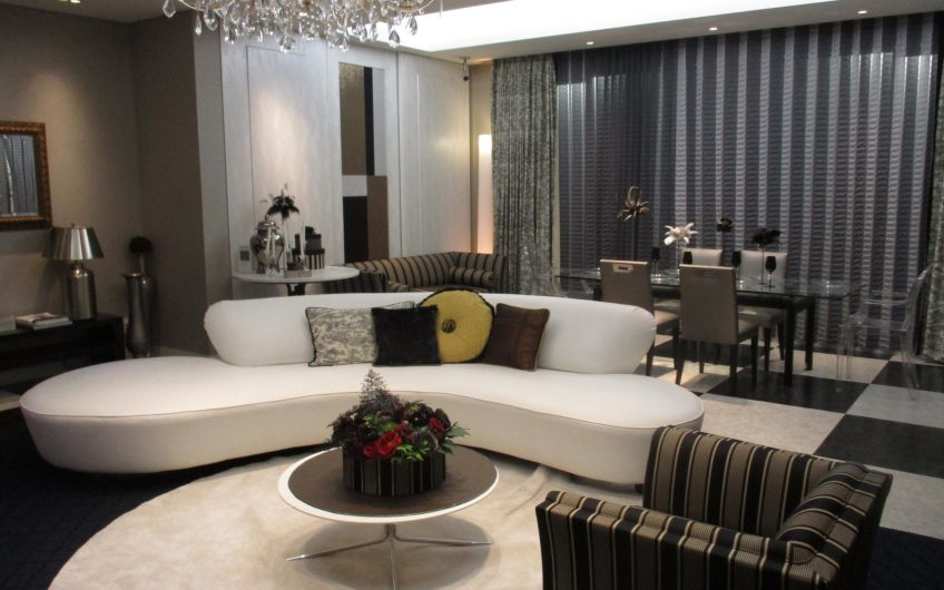 Modern and chic apartment